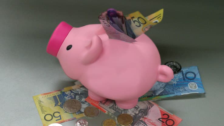 Piggy bank with cash